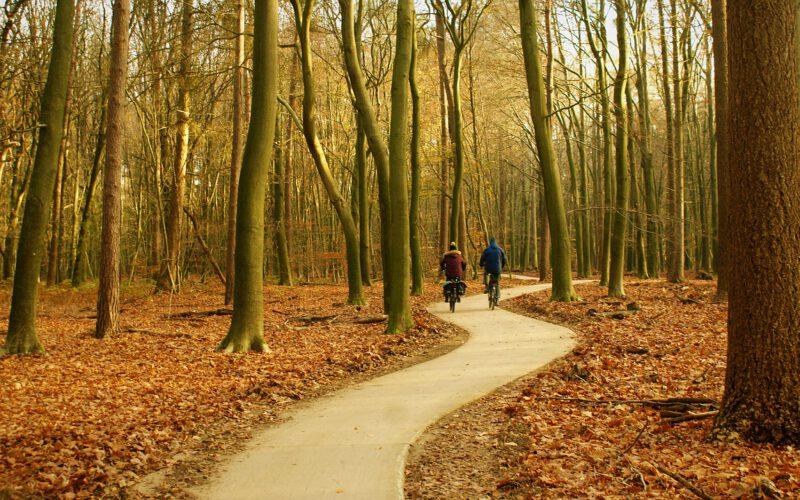 Er even tussenuit op een vakantiepark in de Veluwe
